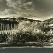 Julius Shulman - Early Original Print Bel-Air, California - 1937