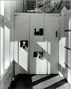 Julius Shulman -The Four Legged Welcoming Committee, Los Angeles