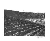 "Julius Shulman-Vintage, Pocket Vest Camera, ""Plowed Fields"""