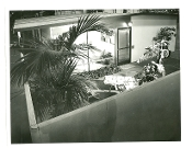 Julius Shulman-Personal Collection-4 Vintage Exterior Prints